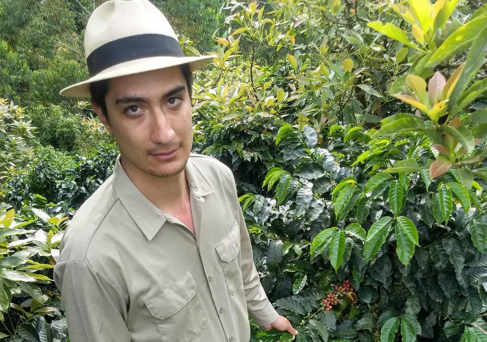 研究表明,鑑於目前的做法,哥倫比亞咖啡土地可能會發生變化