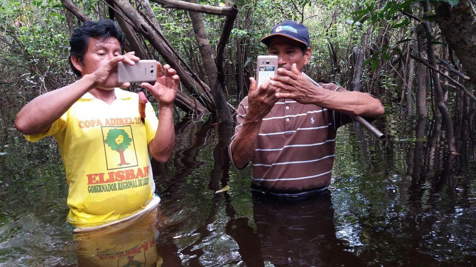 氣候變化:技術推動了亞馬遜遏制樹木流失的努力