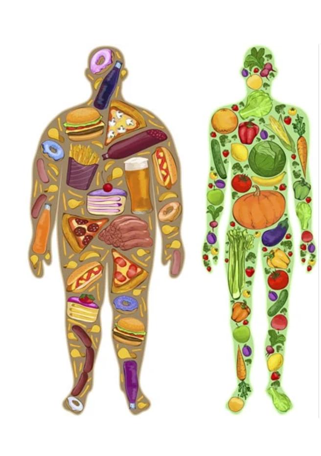 吃飽吃好也能減肥嗎?